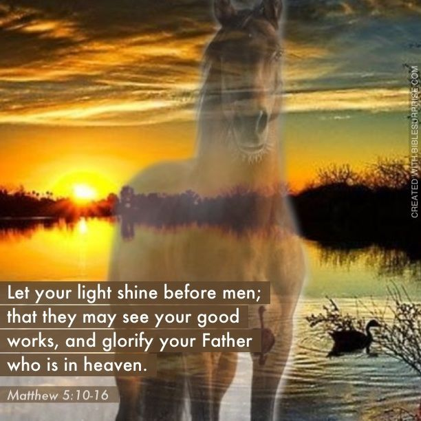 Horse Backgrounds Bible Verses – Quotes of the Day