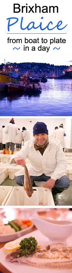 See how head chef Lee, at the TLH Carlton Hotel, Torquay took some fresh Brixham Plaice from boat to plate in a in a day.