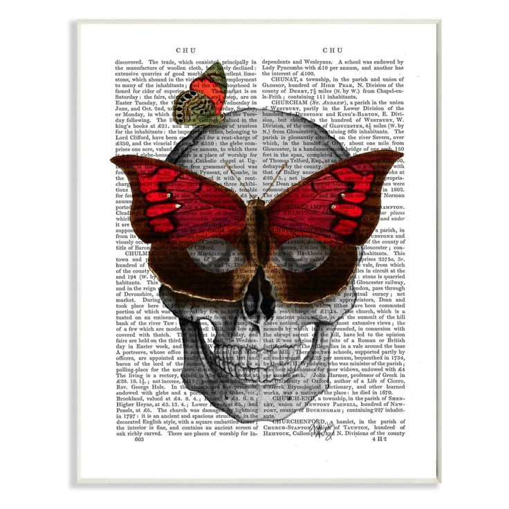 Stupell Decor Newspaper Print Skull with Butterflies Wall Plaque Art - MWP-174_WD_10X15