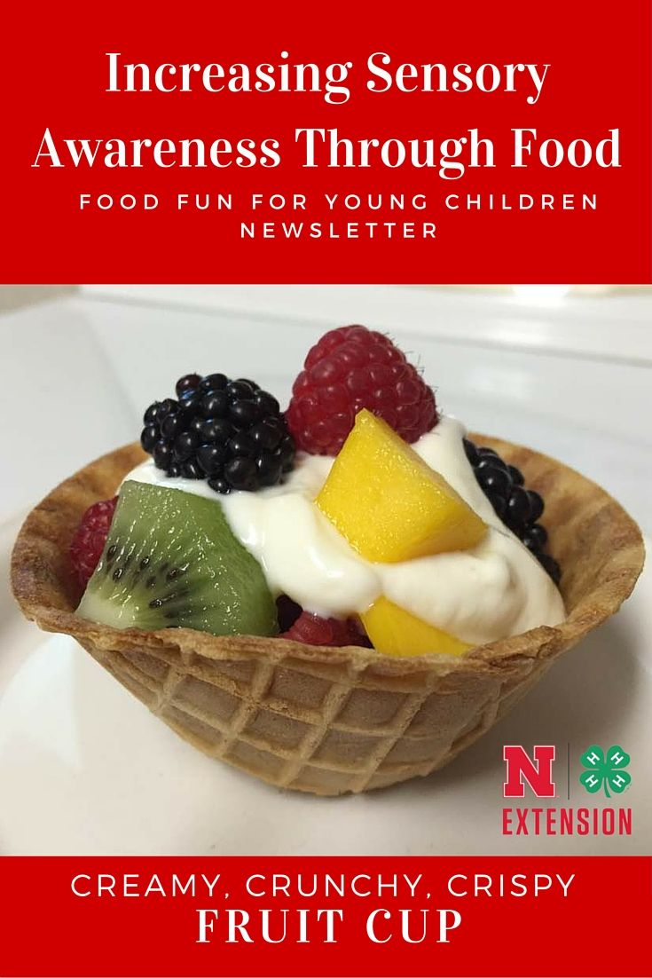 How can we uses our senses to teach young children about food? This Food Fun for Young Children Newsletter has some great tips along with a fun, healthy fruit cup recipe!