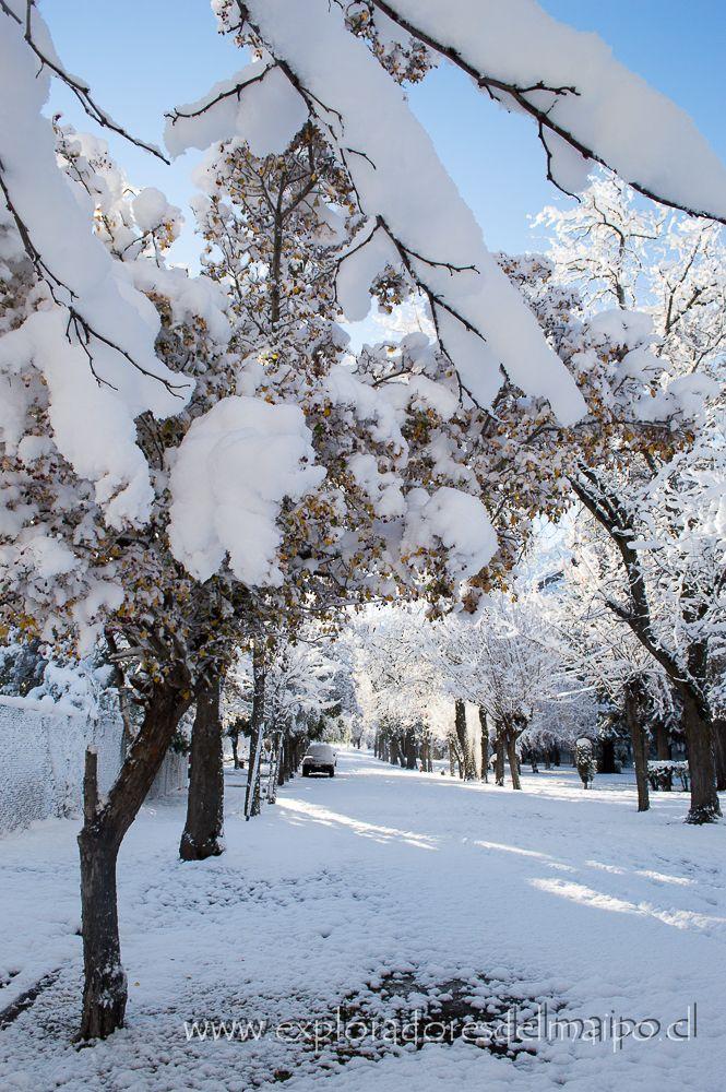 Invierno 2013, en Los Maitenes, Cajon del Maipo, Chile. // Winter 2013 in The Maitenes, Cajón del Maipo, Chile.