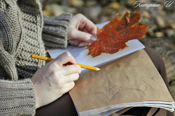 in the Park to draw well