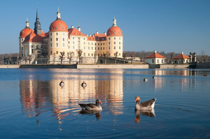 Moritzburg Castle near Dresden. #dresden #moritzburg #castle #germany #europe #daytrip