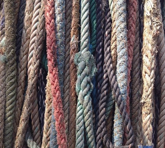 ARTISAN -Rust reds bring warmth to khaki green and stony greys. A sensitive collection of colour, this earthy, autumnal palette speaks directly to the outdoors market, and works across both genders.