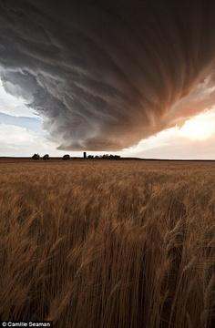 Nuvem de tempestade Supercélula (baixa precipitação) acima do campo de trigo Gurley, em Nebraska, Junho 2012. Fotografia: Camille Seaman.