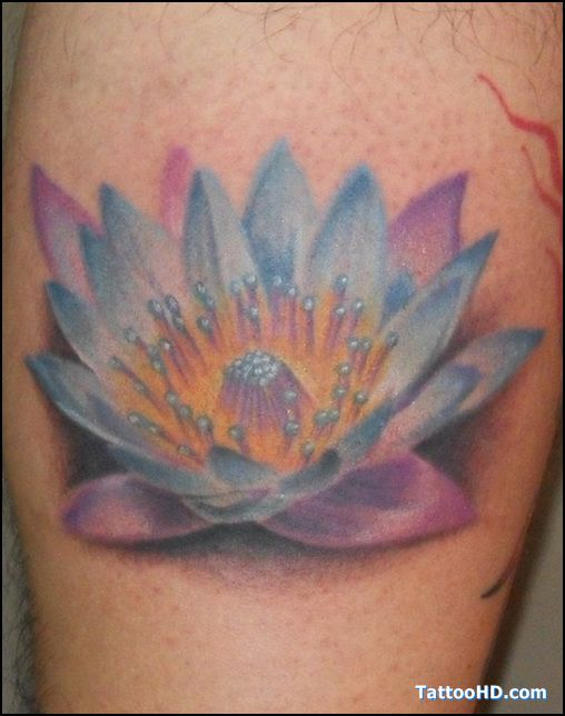 Exotic Flower Tattoos: 92 Best Lotus Tattoo Designs Images On Pinterest