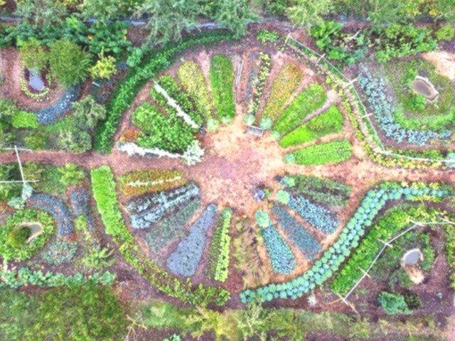 Le Jardin Mandala en Permaculture, principes et ...