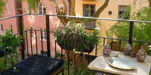 Сад в доме: Озеленение балкона, лоджии, террасы
