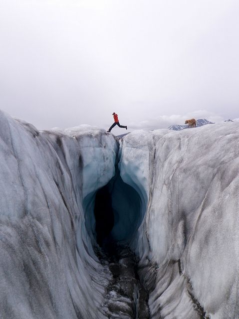 .: Amazing World, Bears Grylls, Ice, Guide Travel, Travel Tips, Leap Of Faith, Earth, Travel Guide, Collection Travel