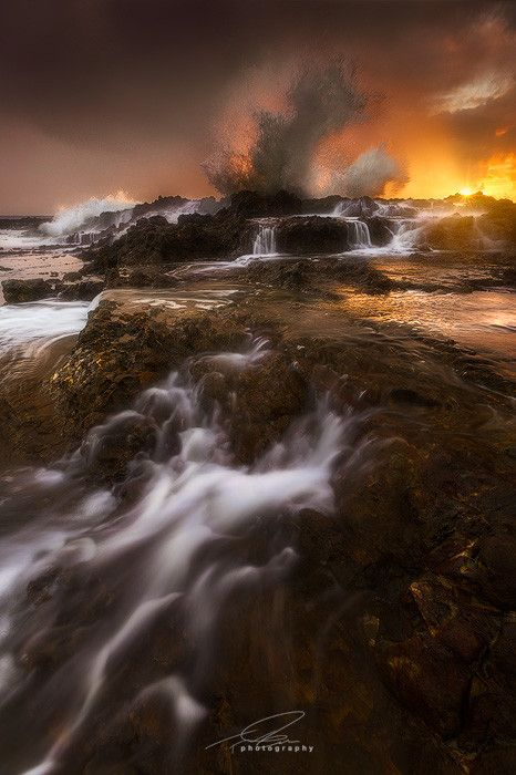"""500px / Photo """"Golden Dragon"""" by Ted Gore Palos Verdes CA"""