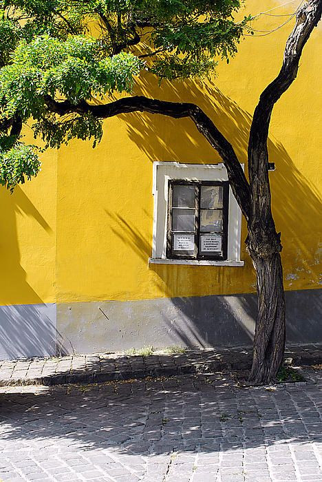 The first documented mention of Szentendre, Hungary originates from 1009AD. Szentendre has an interesting mix of architecture along charming narrow streets and lanes. There are also many interesting doors and windows.  The combination of bright sun, a yellow wall and shade made the exposure a bit challenging. Composing this shot wasn't easy either, due to the other objects you can't see, such as a car, two bicycles and another home that all limited my framing options. #trees, #window…