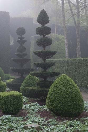 Topiary - Château et jardins de la Ballue. Something very mystical about this to me. Maybe its the fog......