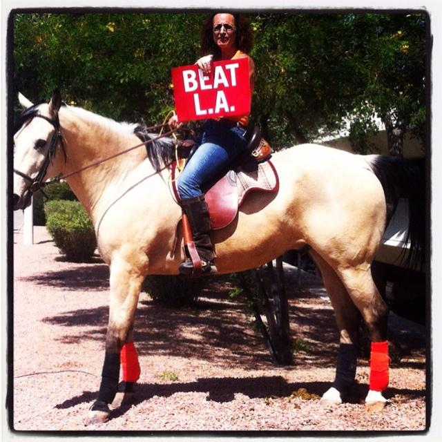 #sfgiantsBeautiful Horses, Sfgiants Christy