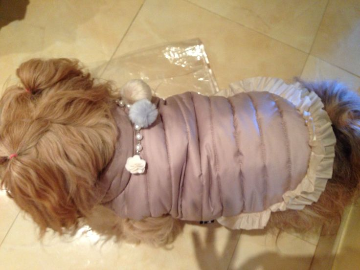 Tiffany. Jacket from Louis Dog
