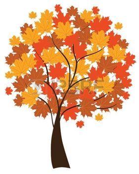 hojas de otoño dibujo: árbol de arce