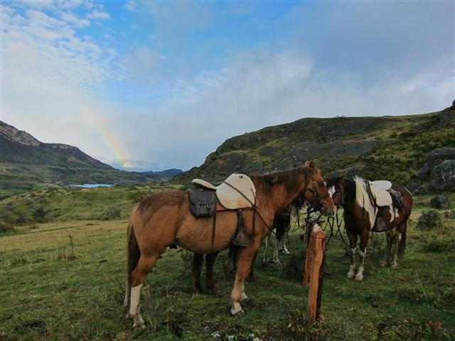 Horses and rainbows in the Andes