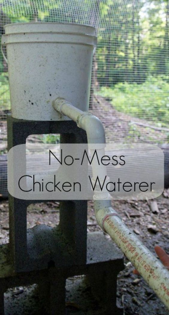 No-mess Easy Chicken Waterer