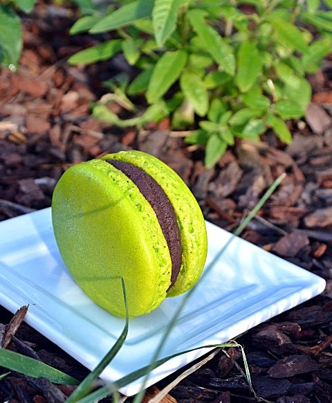 Pourquoi pas .... ??: Macarons chocolat noir / verveine