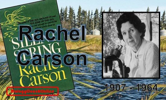 """#TBT: Born in Springdale, PA, #Rachel #Carson was a #marine #biologist, author, and conservationist. After earning her degree in #Zoology, she worked analyzing data on fish populations. Following #World #War II, Carson became concerned with the indiscriminate use of #chemical #pesticides. In her book, """"#Silent #Spring"""" (published in 1962), Carson challenged the established opinions of government scientists and sought to change the way citizens viewed the #natural #world. #throwbackthursdays"""