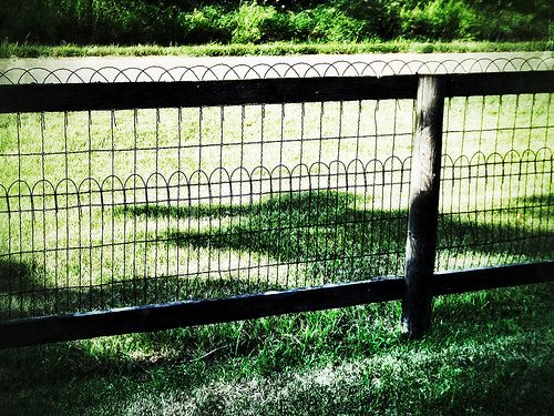 44 Best Woven Wire Ornamental Loop Fences Amp Gates Images
