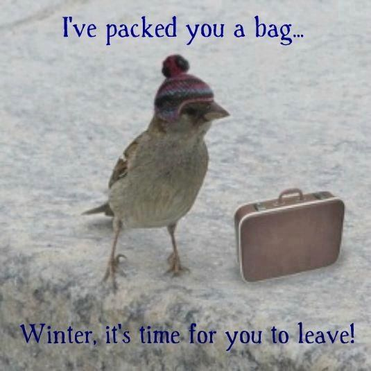 0 goodbye winter hello spring holiday and seasonal