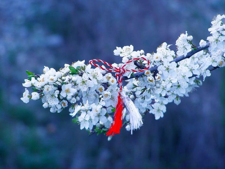#Romania's spring symbol