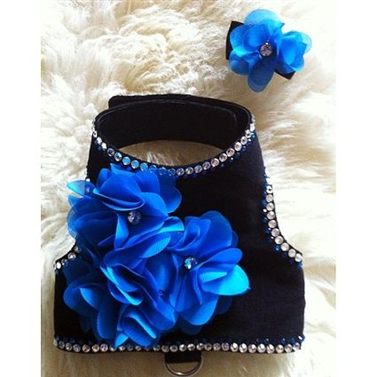 A chic and sophisticated black velvet harness embellished with clear and blue Swarovski Crystal Elements and blue organza flowers that have a crystal in its center. This fancy harness is perfect for cats and small dogs.