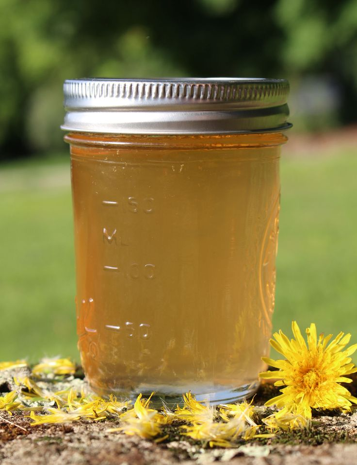 Traditional Scandinavian Dandelion Syrup Recipe from the nerdy farm wife