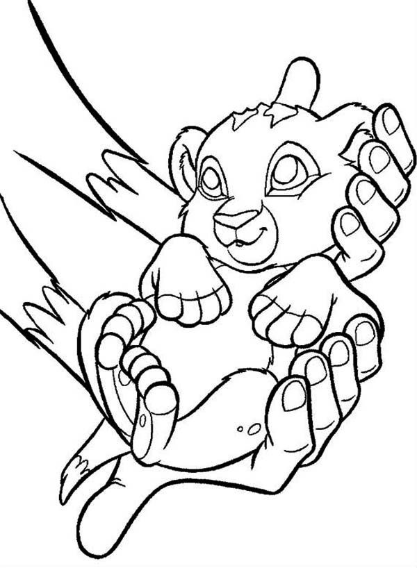 Lion King Coloring Pages Baby Lion King Coloring Get Coloring Pages Coloring Pages Horse Coloring Pages Lion King Drawings