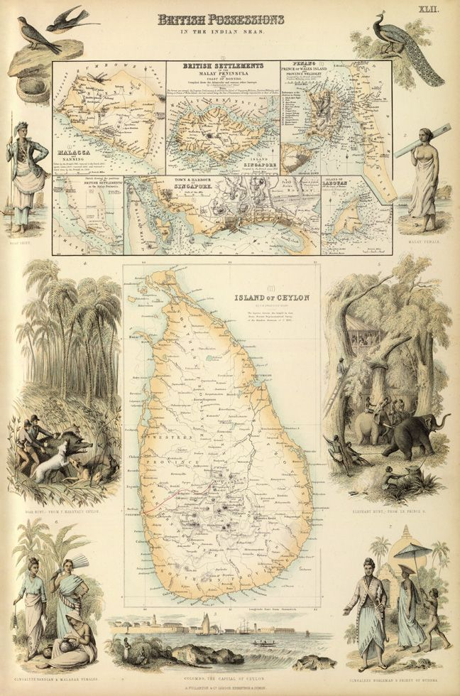 Pictorial Map Of Ceylon Map Of Sri Lanka Available On Paper Etsy Pictorial Maps Fine Art Poster Prints
