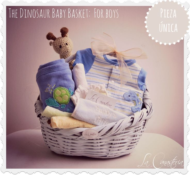 12 best organic baby gift baskets images on pinterest baby gift baby basket for boys con un paelerito estampado blankie azul con tortugra baberito negle Choice Image