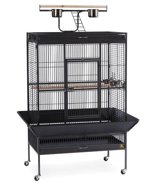 Prevue Pet Products Select Wrought Iron Large Parrot Cage 3154 - Bird Cages at Hayneedle