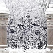gates: Country Houses, Winter Scene, Winter Wonderland, Gardens Gates, So Pretty, Irons Gates, Fence Design, Wrought Irons