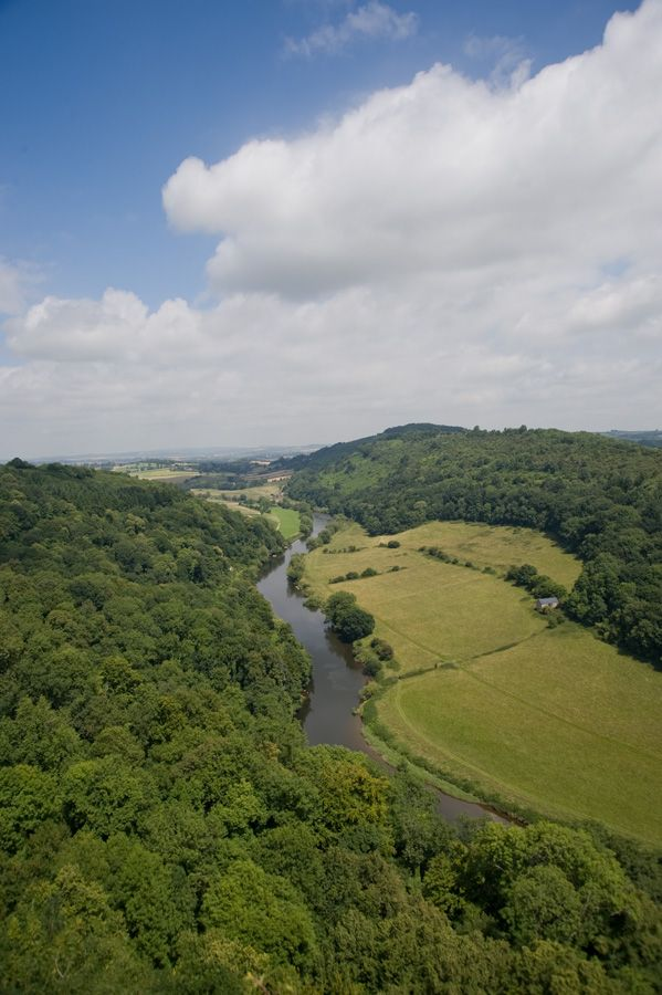 View from Symonds Yat, Forest of Dean