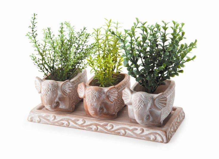 3 White-washed Terracotta Elephant Herb