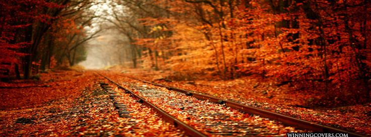 ... facebook timeline cover banners | Fall Autumn Photos | Pinterest