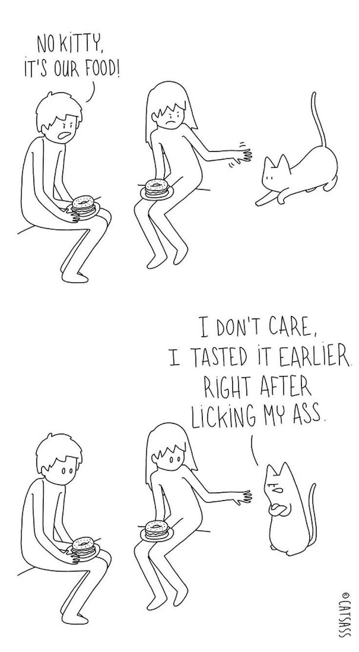 Funny cat comic strip catsass claude combacau 21