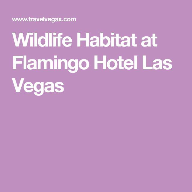 Wildlife Habitat at Flamingo Hotel Las Vegas