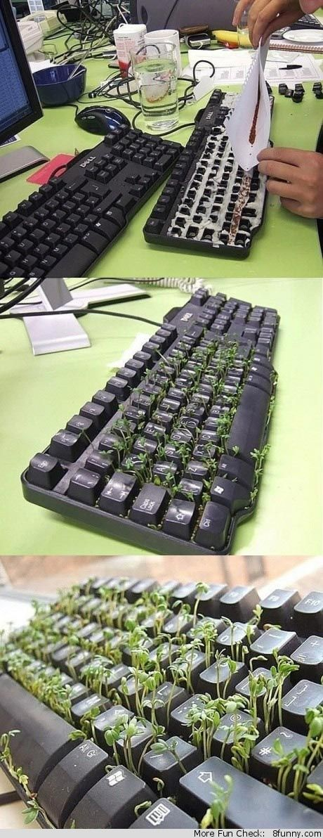 Computer genuis needed!!!!!?