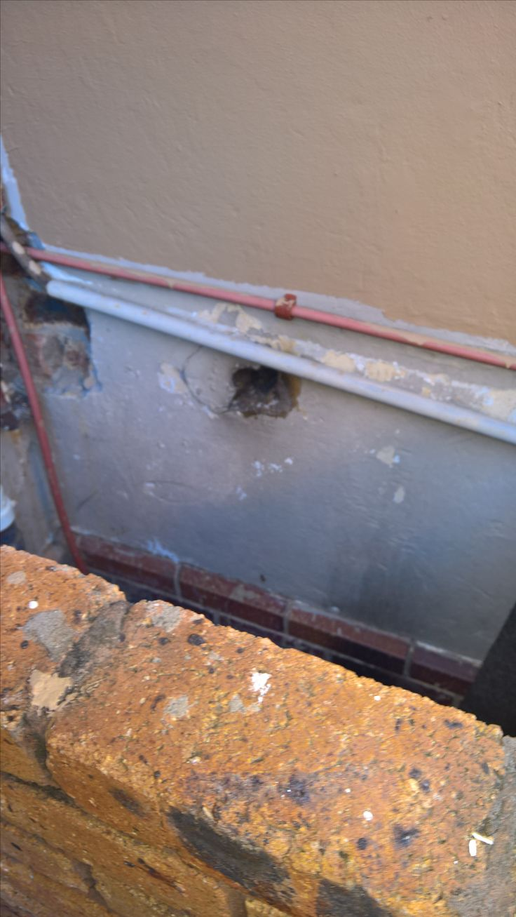 Bee removal in Johannesburg bees removed in a hole in the wall In Pretoria