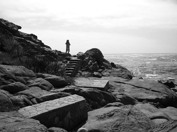 Punta Pite_Zapallar, Chile / Estudio del Paisaje Teresa Moller & Asociados