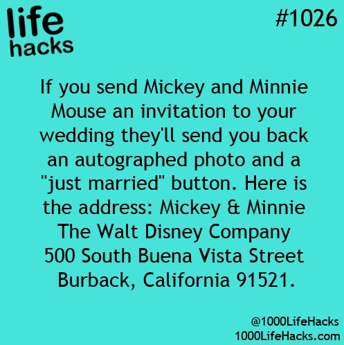Mickey and Minnie: =D Fantastic!