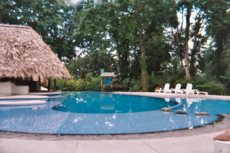 27 Best Images About Pool Landscaping On A Budget