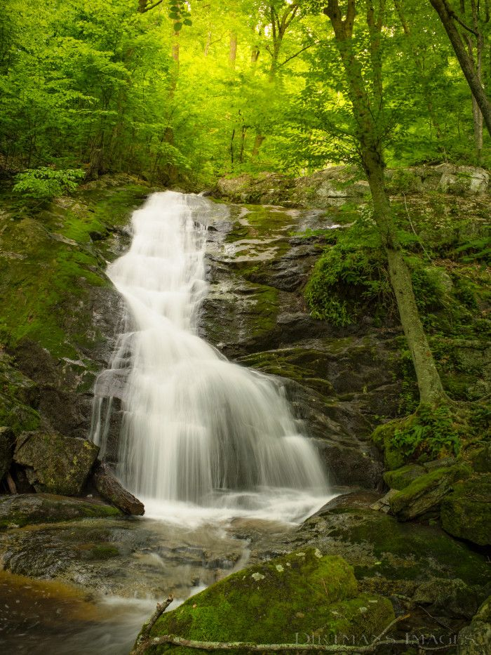 12 Great Hikes Under 5 Miles In Virginia