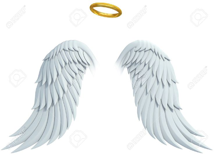 Angel Design Elements Wings And Golden Halo Isolated On The Angel Wings Drawing Angel Wings Png Angel Wings Background
