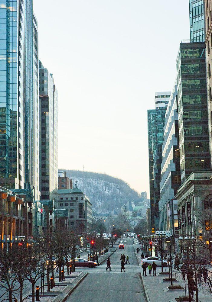 Avenue McGill College - Photo : Eva Blue