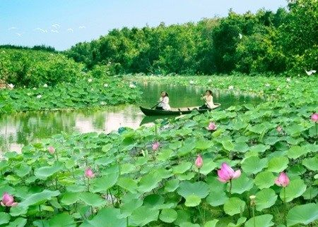 Long An (VNA) – The People's Committee of southern Long An province held a ceremony to receive a certificate recognising Lang Sen Wetland Reserve as a Ramsar site in Vietnam on November 27. Lang Sen Wetland Reserve is then the seventh Ramsar site in Vietnam and the 2,227th worldwide. Speaking at the ceremony, Vice Chairman…