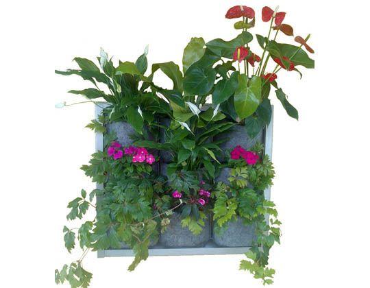 marco jardiner vartical