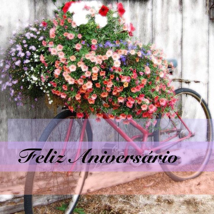 Birthday Ecards In Portuguese ~ Best portuguese birthday messages images on pinterest happy b day and