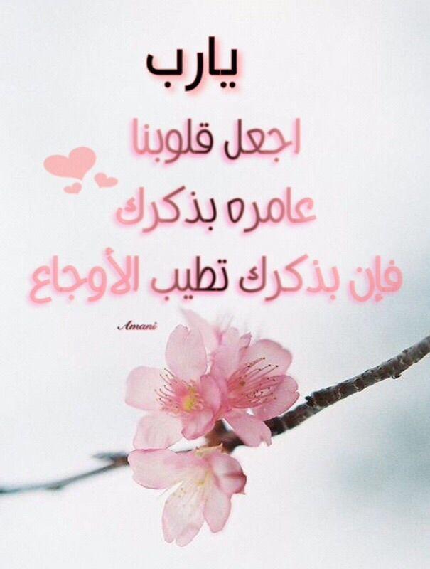 اسلاميات